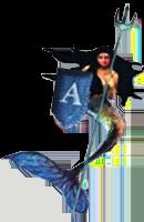 admiral fountains logo