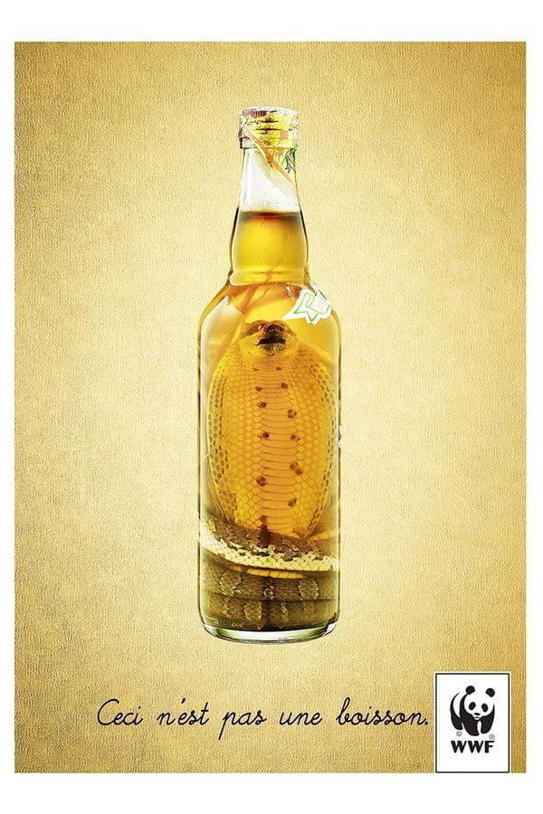 To_nie_jest_fajka_butelka