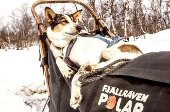 polar.fjallraven.com