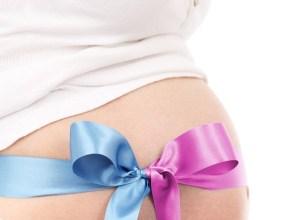 informaţii despre sarcina gemelară