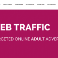 xxxwebtraffic-review