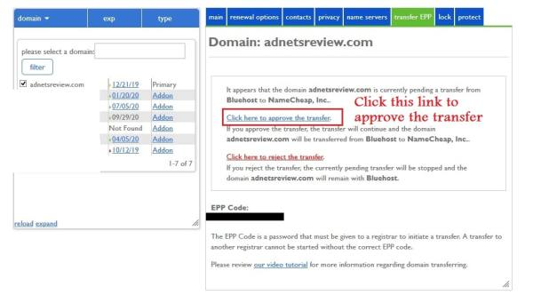 approving the domain transfer on bluehost