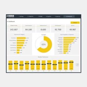 Marketing Budget Dashboard - Capa