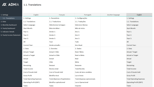 Financial Metrics Dashboard Template - Translations