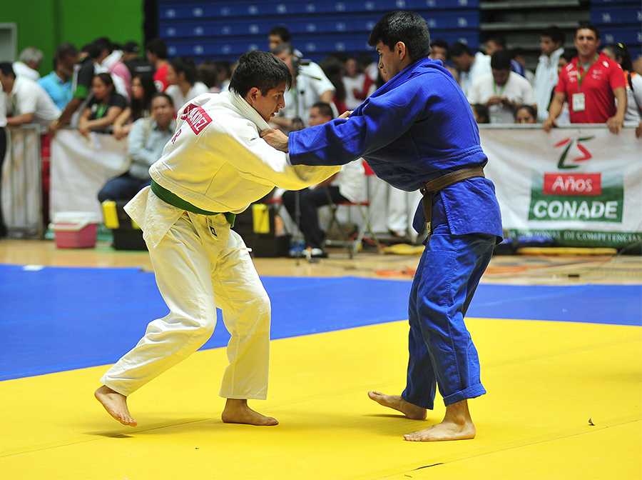 judo campamento 2