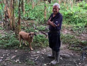 anciano-y-sus-perros