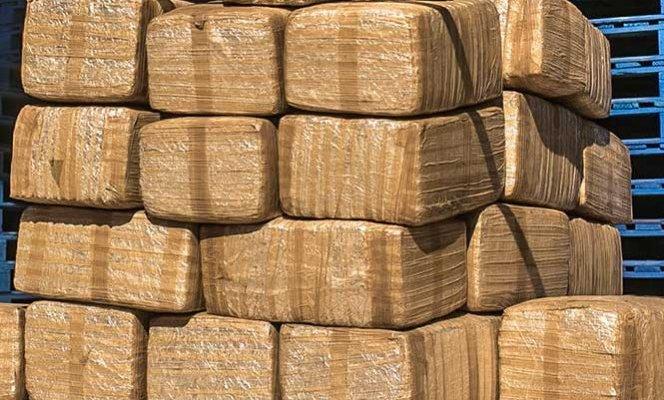 Aromatizan mariguana para despistar a autoridades; les aseguran 2.6 toneladas (17:00 h)