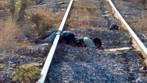 arrollado por tren