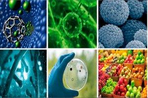 investigacion quimica aplicada