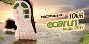 eco run 3