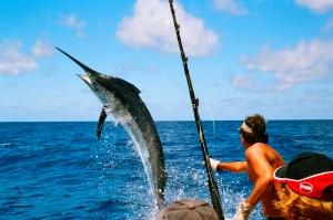 pesca 2