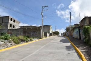 Calle Independencia, Guadalupe Victoria (1)