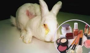 cosmeticos probados en animales