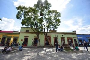 OAXACA CAPITAL (5)