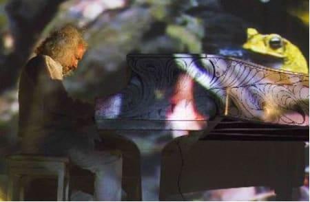 Adondeirhoy.com - Manuel Obregon - Elton John en Costa Rica