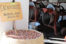 Local cacao beans