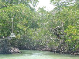 enter the laguna negra