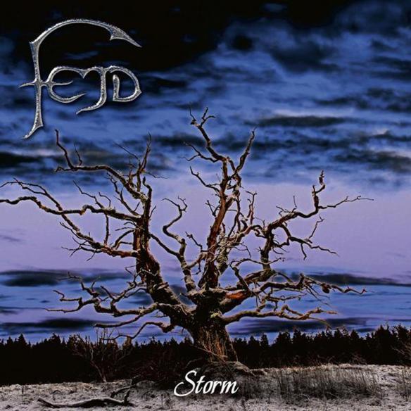 fejd_storm