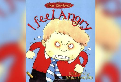 Book - I feel Angry by Brian Moses