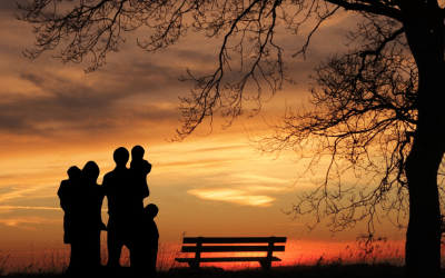 7 Core Issues in Adoption & Permanency: Loss