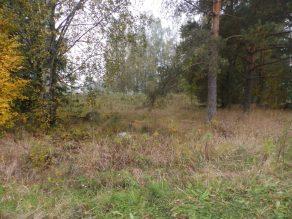 Sastamalan Riihimäen kalmistoa. Kuva: Ulla Moilanen.
