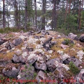 Tampere Nuijanniemen röykkiö. Kuva Kalle Luoto.