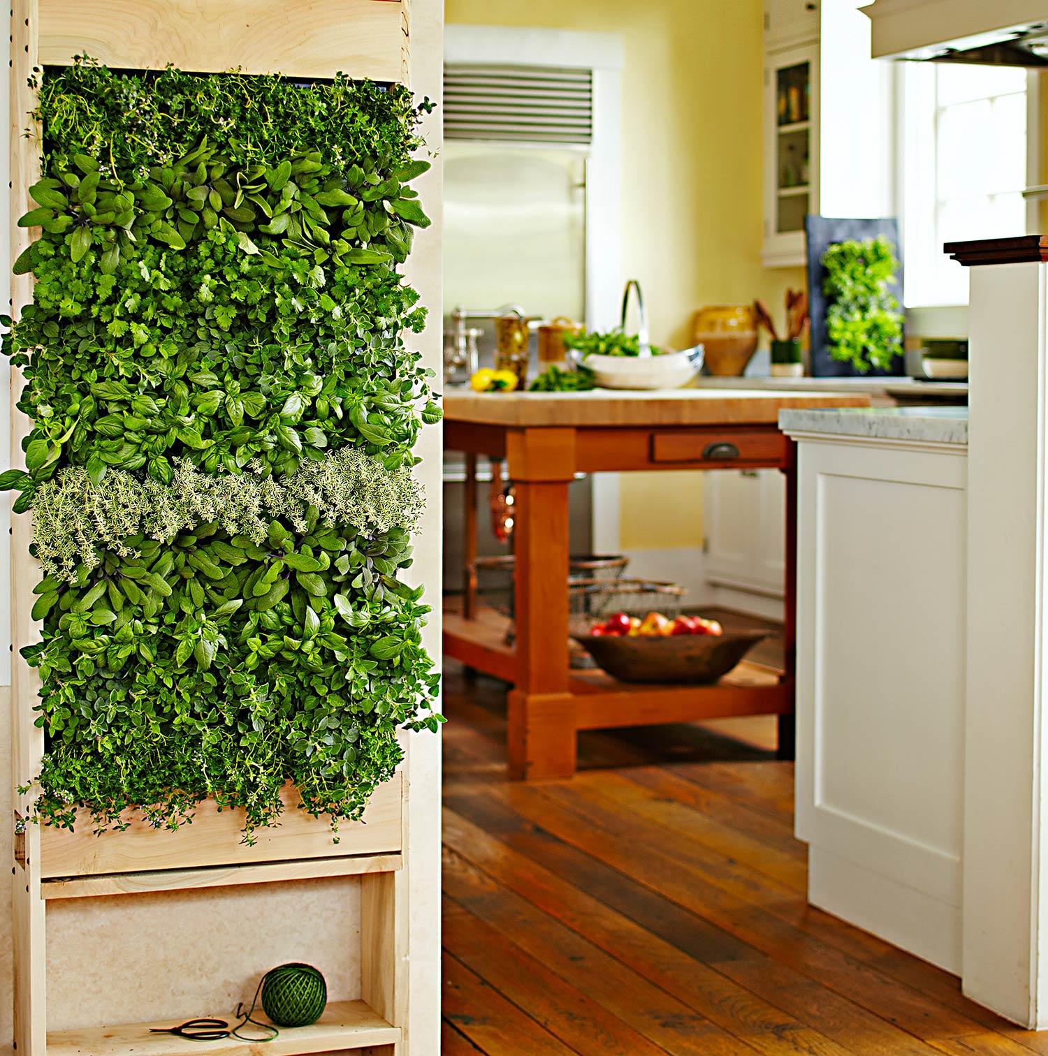 Non-Traditional Wall Décor Ideas to Make a Bold Statement ... on Traditional Kitchen Wall Decor  id=96922