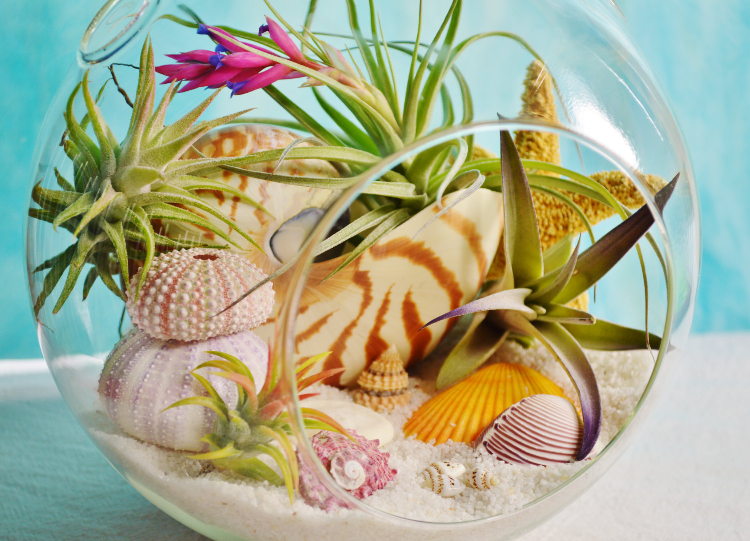 Beach Glass Terrarium