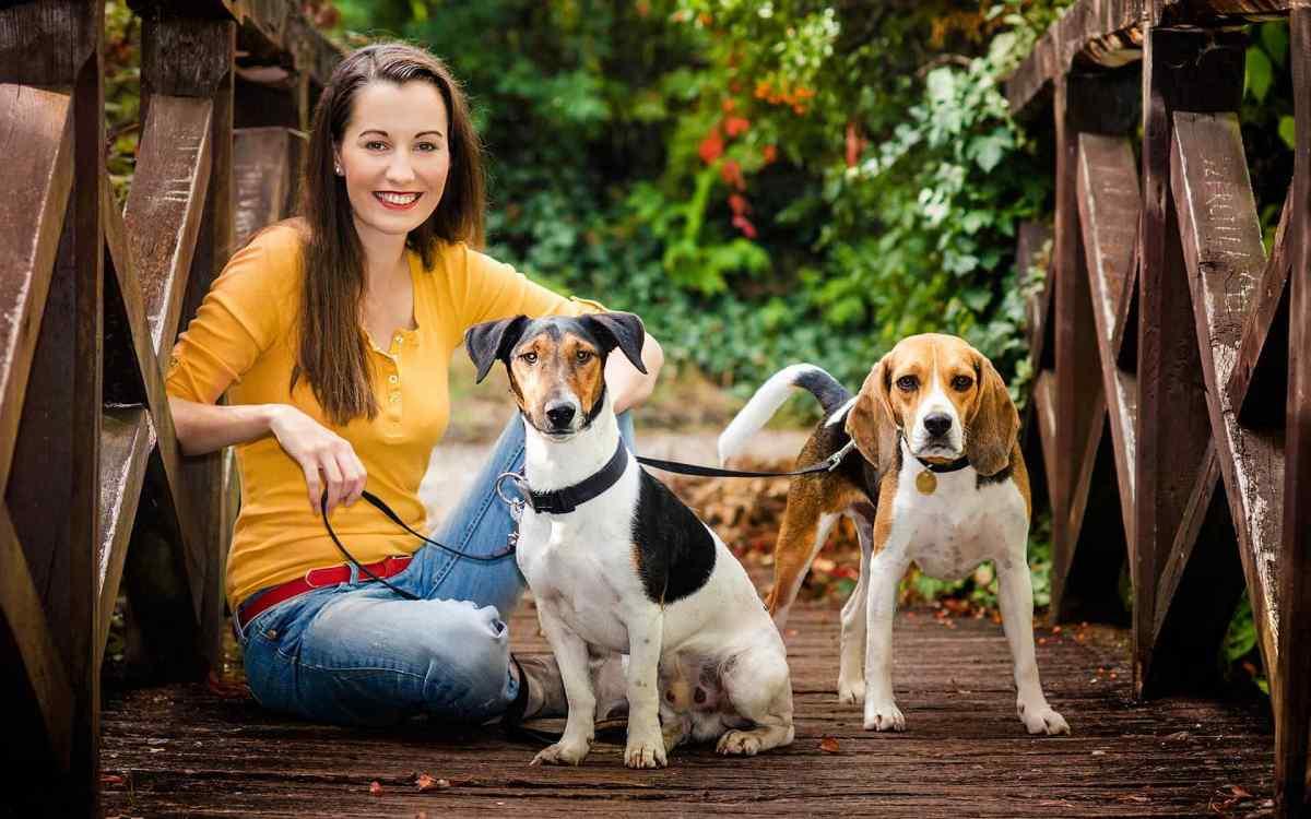 https://i1.wp.com/adorablebulldogs.com/wp-content/uploads/2018/09/post_02.jpg?fit=1200%2C750&ssl=1