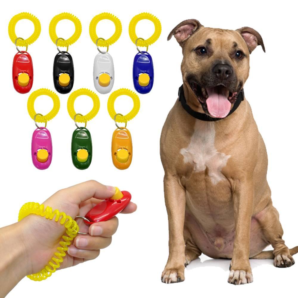 Dog's Training Clicker Dogs Training