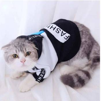 Cat's Fashion Cotton Hoodie Cats Clothing