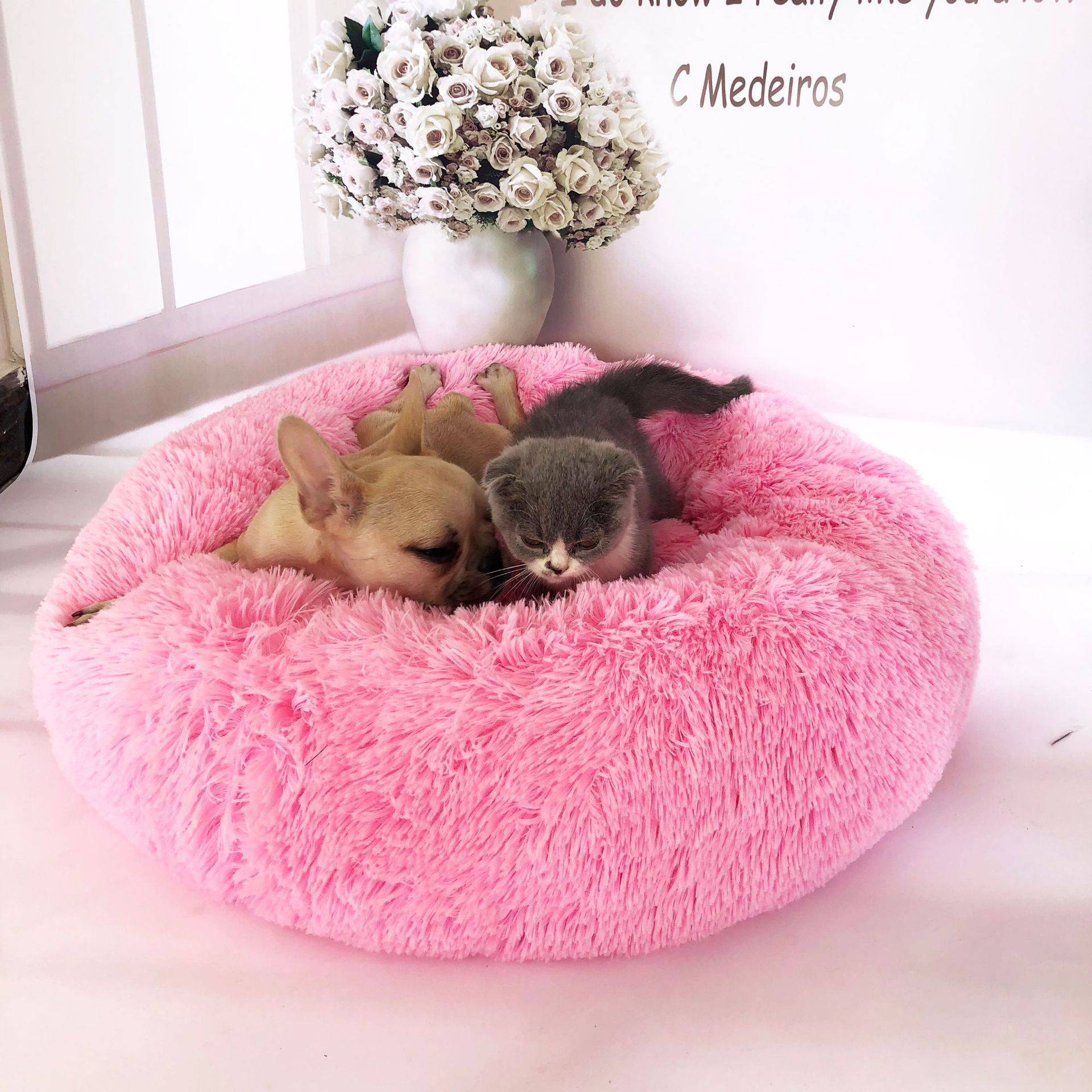 Calming Pet Bed for Cat or Small Dog Beds Beds Cats Dogs