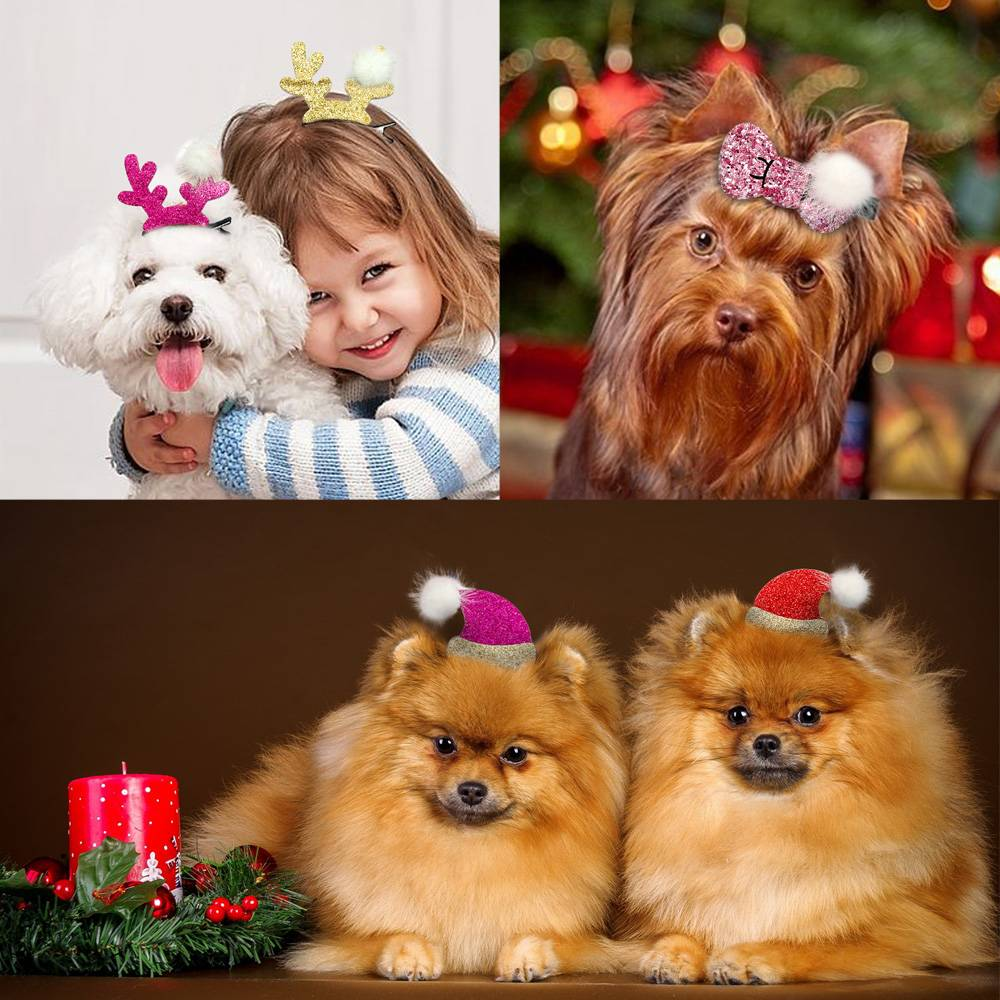 Christmas Style Dog Hair Clips Pet Christmas Costume and Toy
