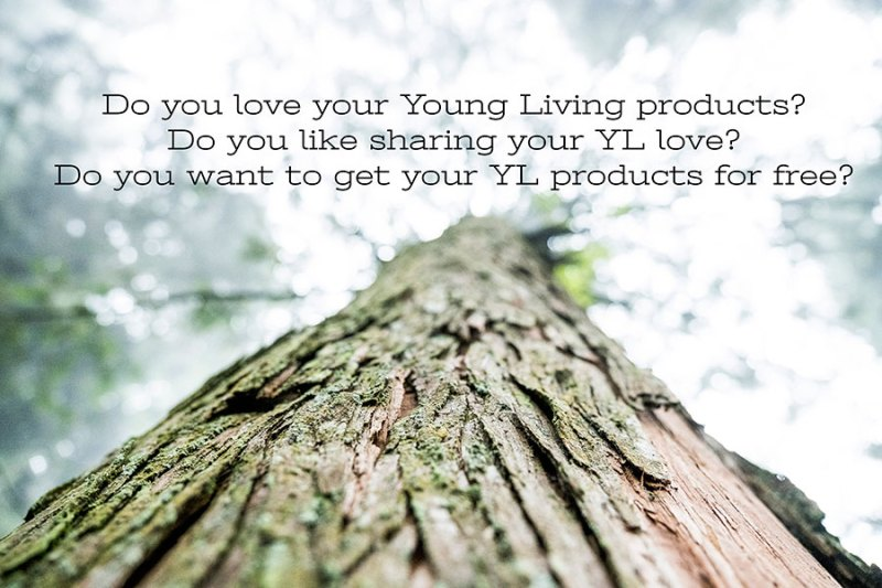 Intentionally sharing Young Living to build a team of your own.