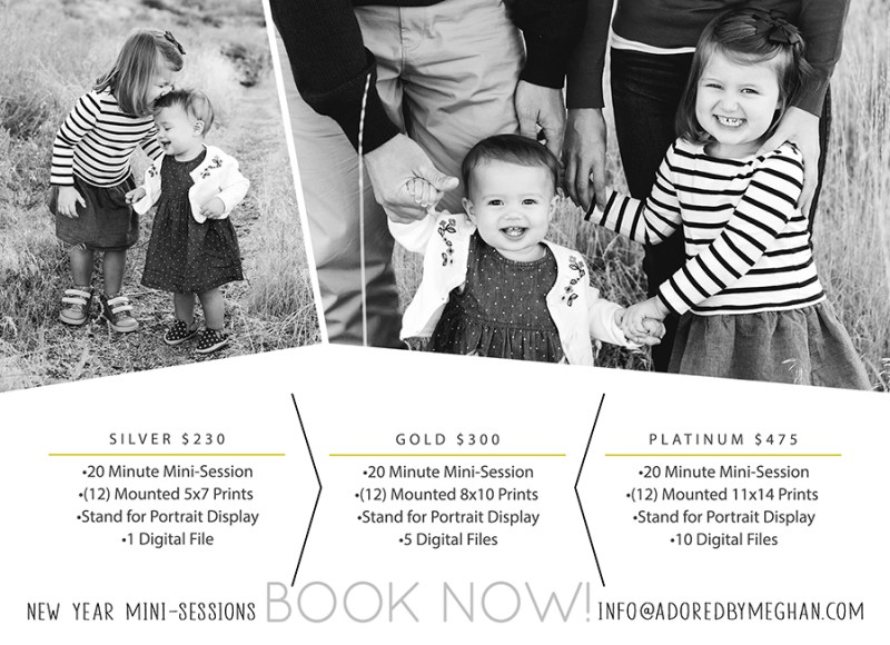 A GRANDER take on holiday minis with your photographer. Join Adored by Meghan to get some beautiful portraits of your family, along with prints you can display throughout the years to come.