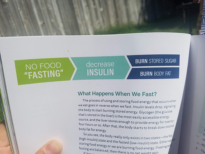 What happens when we fast? No food, or 'fasting', means decreased insulin, which results in your body burning stored sugars and body fat.