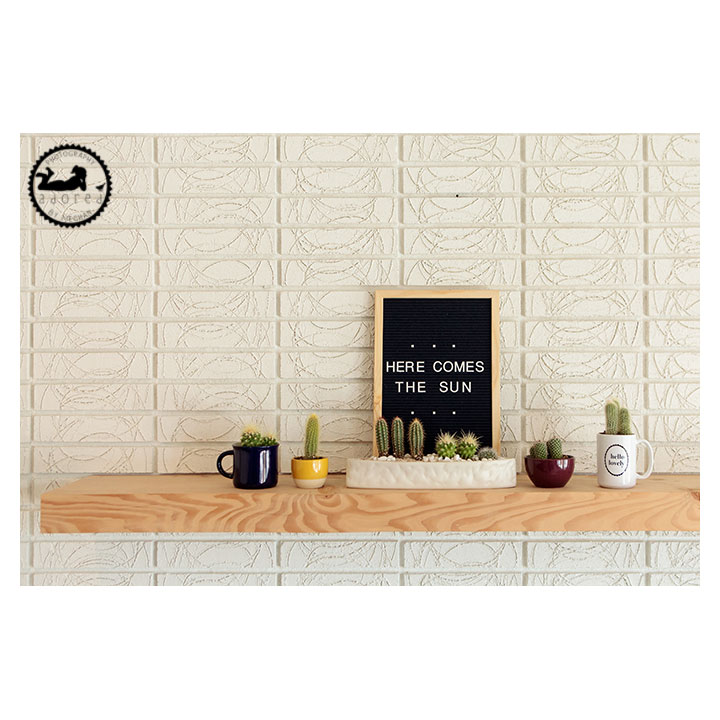 Cacti display with letterboard on fireplace mantle