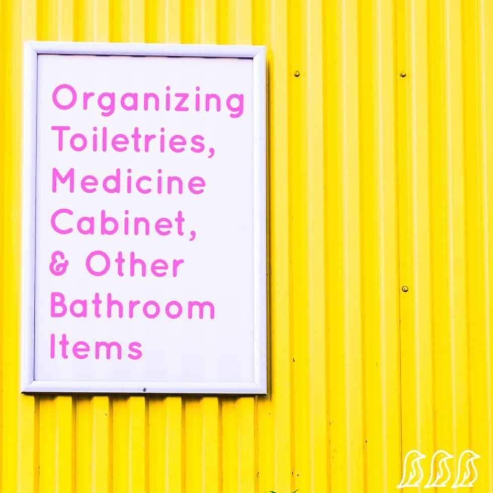 Organizing Toiletries, Medicine Cabinet, & Bathroom Items