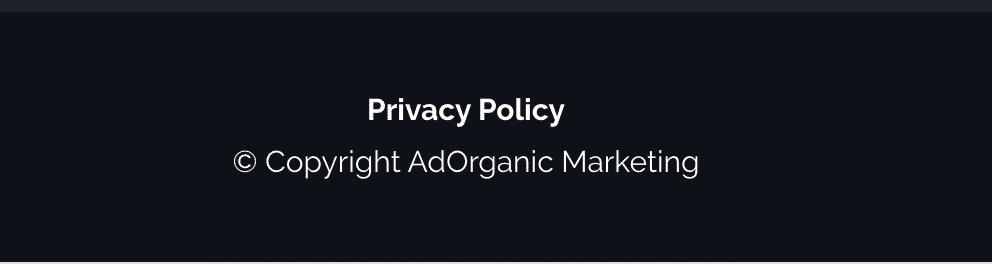 Privacy Policy - AdOrganic Web Development