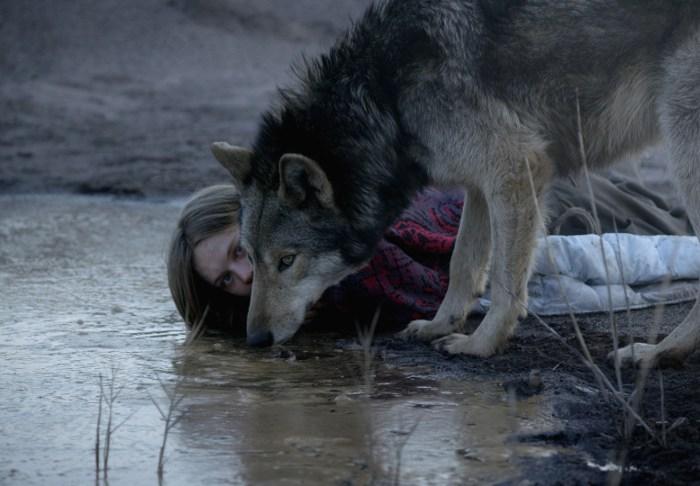 Szenenbild aus WILD (2016) - Ania (Lilith Stangenberg) und der Wolf - © NFP