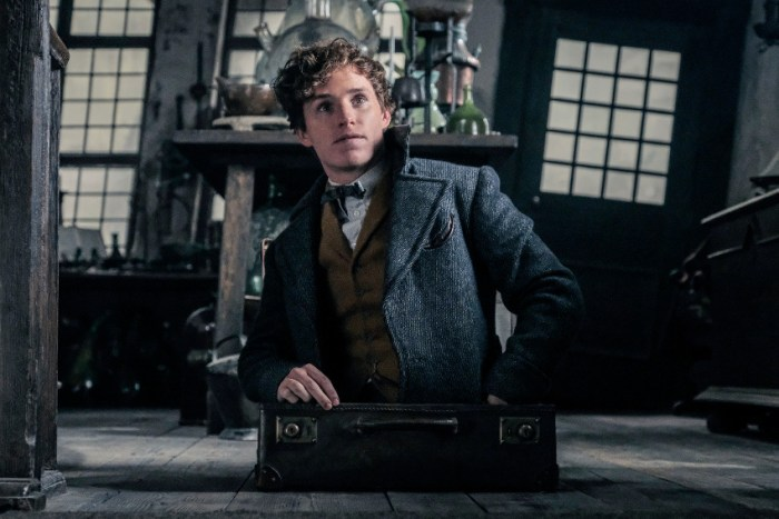 Szenenbild aus PHANTASTISCHE TIERWESEN: GRINDELWALDS VERBRECHEN - FANTASTIC BEASTS: THE CRIMES OF GRINDELWALD (2018) - Newt (Eddie Redmayne) im Koffer - © Warner Bros. Deutschland