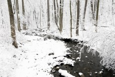 13-stream through snow4