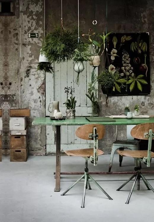 plantas no home office 9