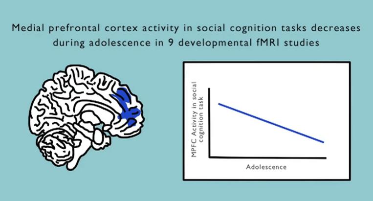 cortex median ado