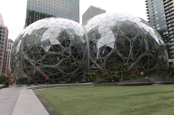 The Amazon Spheres