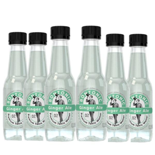 Premium Tonic Water Ginger Ale 0,195 l X 6 kom Bontonic