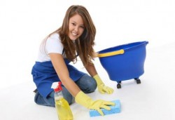 cleaning-lady-e1301144353122