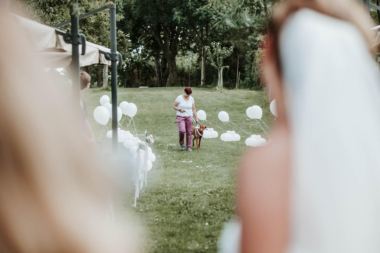 Hochzeit_Binshof_Speyer-1018