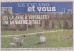 Moutons Lalanne _resize