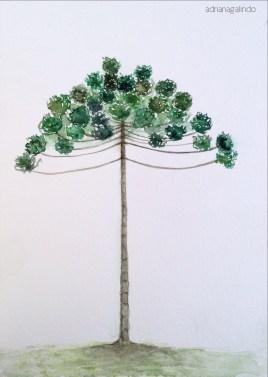 Araucaria, Brazilian Araucaria, tree 6, 21 x 15cm. Sold